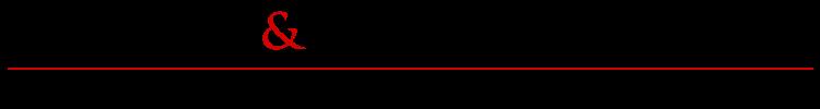 Nicholas & Tan Partnership LLP Logo